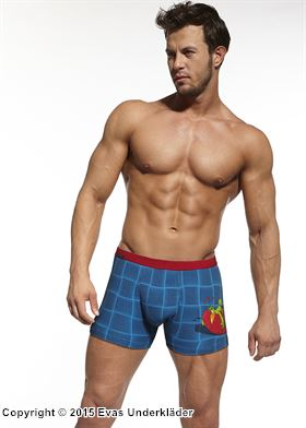 Rutiga boxershorts med tryck